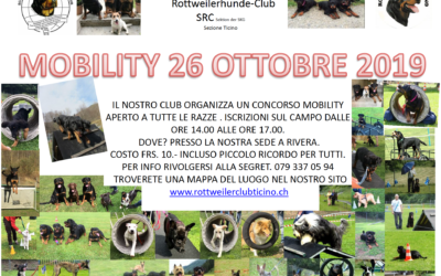 Mobility 2019