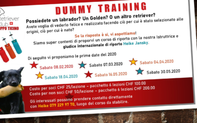 Dummy Training