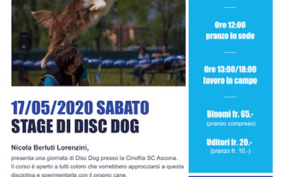 Stage di Disc Dog