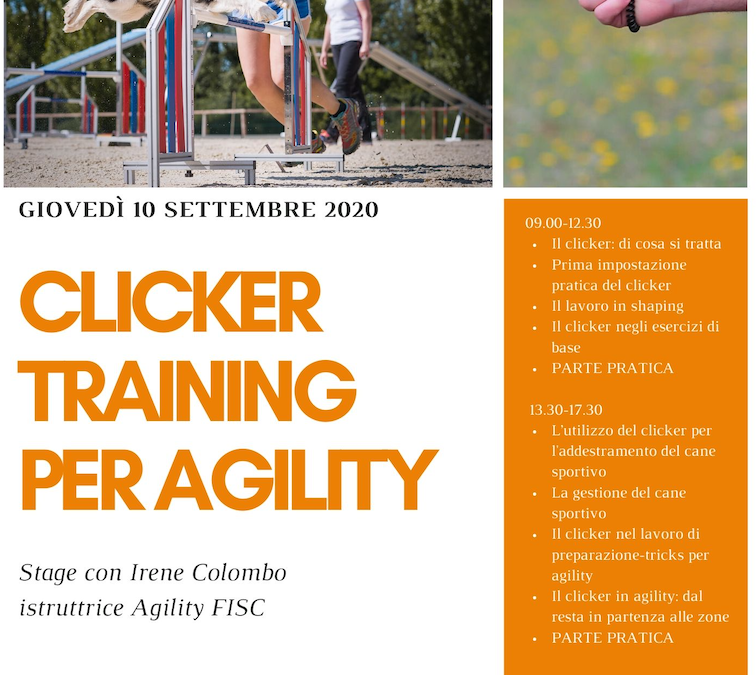 Clicker Training per Agility – 10 Settembre