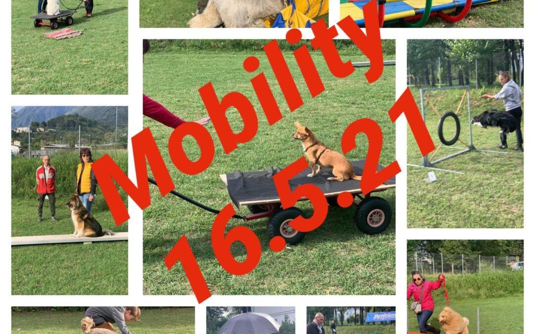 SC Ascona – Mobility Domenica 16.05.2021